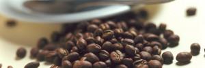 Le programme IGNITE se penche sur le thème `Café et maladies neurodégénératives`